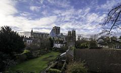 York Minster (Brian_Gray) Tags: york minster church landscape nikond7100 winter sky gardens