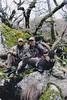 Spain Ibex Hunt & Driven Partridge Hunts 62