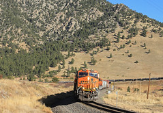 Blue Mountain Road (GLC 392) Tags: bnsf es44dc es44ac blue mountain road golden co colorado emd sd70ace 8501 hproden qpvdvj railroad train manifest railway morning down hill back ground background