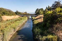 Permanente Creek in Shoreline Park (donjd2) Tags: california unitedstates mountainview shorelinepark permanentecreek