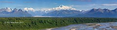 Denali Viewpoint South (Ed Boudreau) Tags: trees summer alaska landscape nationalpark panoramic mountians mountmckinley ruthglacier mounthunter denaliviewpointsouth moosetooth chulitnariver milemarker134