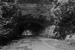 Water of Leith walkway (MacDor Photography) Tags: light bw night scotland edinburgh path tunnel waterofleithwalkway