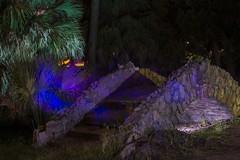 PS__DSC6614 (_Maji_) Tags: nightphotography paintingwithlight nola neworleanscitypark