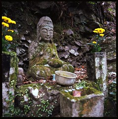 Stone Statue on the Trail (maida0922) Tags: old autumn mountain flower statue stone temple kyoto buddhism trail arashiyama 京都 嵐山 千光寺 mossed senkouji