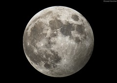 Penumbral lunar eclipse 10.18.2013 (joeybocc1) Tags: moon eclipse nikon space hobby astro luna nasa explore telescope crater astrophotography astronomy nightsky universe lunar cosmos solarsystem celestron discover darksky milkyway moonsurface astroimaging penumbral neximage