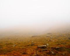 Bis zum Ende des Himmels (Huygens! aka GSatiFan) Tags: lake fog see wasser nebel swiss berge grindelwald alpen moor alp berner oberland bachalpsee bachsee