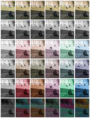 Collage 6 Variations on a Sequence of 6 Pictures - Selbstportrait AbesseAdesse: Rucksack, Bierdosenverschlu im Rahmen - An Exercise: Fools Tower, One Thousand and One Sights ~ Narrenturm Tausendundeine Ansichten, eine bung (hedbavny) Tags: vienna wien dog color tower window collage museum bag campus akh psychiatry austria sterreich closed decay fenster tint hund universitt dye rucksack popular turm farbe psychiatrie fool nhm hof mauer gitter insaneasylum narr brache ansichten tasche nuthouse narrenturm lernen mentalinstitution sammlung lunaticasylum gugelhupf verfall madhouse bung pasin irrenhaus geschlossen unorthodox naturhistorischesmuseumwien alsergrund frben altesakh irr tnen rundbau foolstower geschlosseneanstalt 1090wien pathologisch hof6 hedbavny brachenarrenturm pathologischanatomischesammlungdesnaturhistorischenmuseums ingridhedbavny narrenturmunnummeriert
