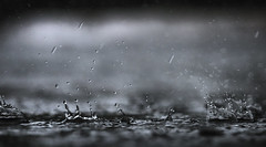 Raindrops (Puresilk Images (AWAY)) Tags: rain drops raindrops macro splash water storm droplets black white bw dramatic high