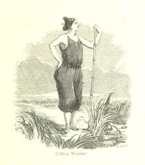 Anglų lietuvių žodynas. Žodis cotton-weed reiškia medvilnės piktžolės lietuviškai.