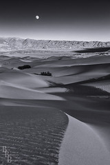 Mesquite Moon (Bob Bowman Photography) Tags: california blackandwhite bw moon lines landscape sand desert dunes curves moonrise deathvalley sanddunes bowman d300 deathvalleynationalpark bobbowmanphotography