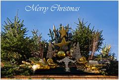 Merry Christmas (FocusPocus Photography) Tags: christmas germany weihnachten deutschland christmasmarket weihnachtsmarkt merrychristmas ludwigsburg froheweihnachten