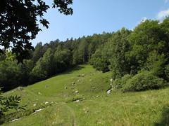 Orsieres - Martigny (12.07.13) 48 (rouilleralain) Tags: valais sembrancher valdentremont stbernardexpress orsires viafrancigena