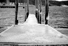 DSC_0144 (Paige Moran Photography) Tags: ocean trees seagulls snow ice beach dock rocks snowstorm icy icicles