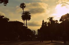 Balboa Park, San Diego (KevinEi(XE-2)) Tags: california park trees usa sun green grass san exposure day view meadow diego balboa greenfield grassland