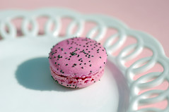 The One That I Want-Getty, Explore 6/15 #274 (JebbiePix) Tags: pink white macro ceramic strawberry cookie dish pentax sweet pastel sigma plate sugar macaroon snack pastry treat sugary porcelain abigfave