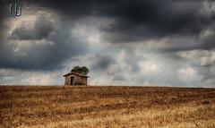 Tree House (Nigel Jones QGPP) Tags: france field rural landscape farm shed hut crops farmer shelter