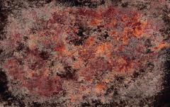 ArtGrafx Chaos Grunge (ArtGrafx) Tags: usa texture texas chaos antique background grain decatur backdrop weathered aged distressed mottled earthtone desktoppublishing artgrafx