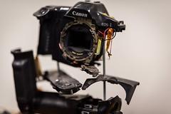 I did not do this. 272/366 (jenniferdudley) Tags: cameraporn camera f14 nikkor105mm nikkormacro nikkor nikonphotography nikond750 oops broken smashed smashedcamera canon nikon macro 28sep16 day272366 366the2016edition 3662016