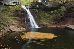 Sullivan Falls, Sullivan County PA (jkrieger84) Tags: nikon d500 landscape water fall leaves nature waterfall sullivan falls pa
