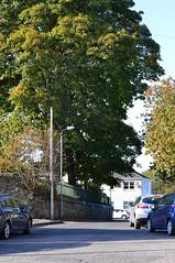 Kilmarnock, Ayrshire. New Street. (Phineas Redux) Tags: ayrshirescotland newstreetkilmarnockscotland ayrshire scotland