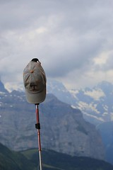 11781627_10206357899300130_4394034430262914669_n (changeyourscreennametopatrick) Tags: switzerland travel trekk hike passport mountains trees cows cheese waterfall wildflower meiringen oberland swiss wanderer