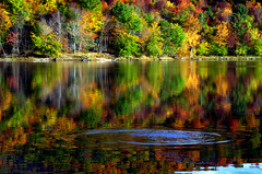 The Lady of the Lake (Captions by Nica... (Fieger Photography)) Tags: reflections reflection water landscape lake leaves colorful colors forest fall foliage autumn nature ripples branches bright quebec canada outdoor serene