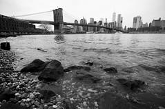 (baba_jaga) Tags: nyc newyork 2016 usa manhattan bw bn