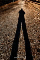 Skyggespil, Ry 2016 (Appaz Photography ☯) Tags: appazphotography denmark jylland ry kielsgården shadows skygger