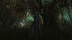 in the dark of the night (teagandaly) Tags: {reverie} logo laq maitreya reign dva