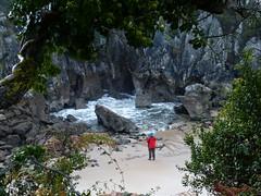 Playa de Gulpiyuri (13) (calafellvalo) Tags: cangasonsgulpiyuriasturiesasturiassidrasidreriacalafellvalo gulpiyuri cangasdeons asturias asturies sidra escanciar sidreria costa acantilados calafellvalo espaa cantbrico