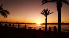 MORE FROM BEACH BY SUNSET 20160906_200611 (2) (hans 1960) Tags: beach strand sunset sun sonne sol soleil palms palmen people wasser water licht golden light outdoor nature natur malle spanien espania landschaft landscape urlaub holyday wellen waves silhouetten