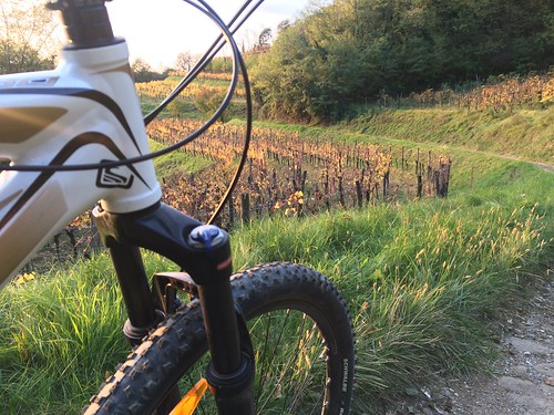 Collio in MTB - 08