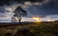 Cloudy November Evening (Peter Quinn1) Tags: longshawestate november millstoneedge derwentvalley cloudy darkskies stormy peakdistrict