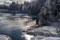 Falling Snow (RogerHerrett) Tags: canon 70d canon70d canoneos70d 18135mm canon18135mm canonef18135mm canonefs18135mmf3556is snow water stream river trees sun sunshine falling brook creek