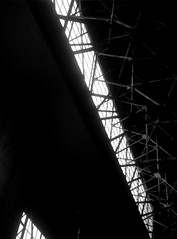(venation) (Dinasty_Oomae) Tags: nagel vollenda    blackandwhite bw monochrome outdoor jmsdf    shimofusaairbase  hangar