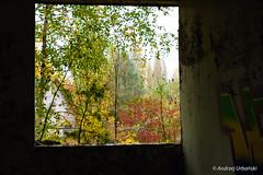 DSC_1391 (andrzej56urbanski) Tags: chernobyl czaes ukraine pripyat prypeć prypyat kyivskaoblast ua