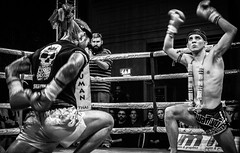 Wai Kru (calumccampbell) Tags: muay thai martial art muaythai boxing thaiboxing fight fighting ring mma octagon spar sparring combat gloves shorts edinburgh scotland jam jouse jamhouse black white bnw mono monochrome canon 60d knock out knockout ko tko elbow knee kick box punch punching