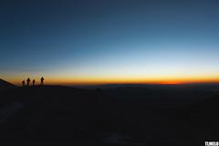 """Morning Hunters"" - Volcano Acotango - Bolivia (TLMELO) Tags: 6542 bolivia sajama cordilheira andes atacama desert climb montanhista escalada summit cumbre cume glaciar bolvia cordillerareal cordilheirareal southamerica amricadosul altiplano climber mount trekking sky cu clouds caminhada heavy hiking climbing hike backpack backpacking keepwalking justdoit impossibleisnothing walking walk ice glacier gelo snow neve landscape nature natureza paisagem trilha mountain montanha mountaineer mule mula huaynapotosi sunrise acotango"