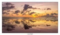 Waterworld (Laurent Asselin) Tags: paysage sunrise reflets eau ocan mer soleil ciel nuages leverdesoleil aube guyane kourou