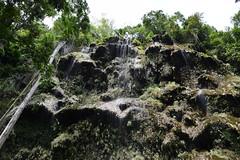 草木を伝って流れ落ちる水がカーテンのよう (Mr. and Mrs. Manpuku) Tags: フィリピン