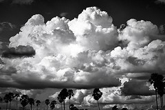 Clouds Orgy! (Tungmay aka ) Tags: clouds bw monochrome thailand wow brilliant