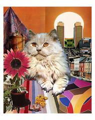 Leo - StarCat (tjager) Tags: astrology zodiac starcat livingferal cat lion firesign catlover sunflower peridot sun collage art analog leo