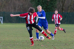 Altrincham LFC vs Stockport County LFC - December 2016-180 (MichaelRipleyPhotography) Tags: altrincham altrinchamfc altrinchamlfc altrinchamladies alty amateur ball community fans football footy header kick ladies ladiesfootball league merseyvalley nwrl nwrldivsion1south nonleague pass pitch referee robins shoot shot soccer stockportcountylfc stockportcountyladies supporters tackle team womensfootball