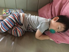 2016.11.18 (amydon531) Tags: baby boys kids brothers justin jarvis family toddler cute