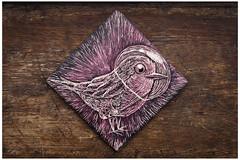 Petirrojo para mam (Cacto pinhole) Tags: illustration ilustracin illustrator drawing draw dibujo scratch cacto cactopinhole robin petirrojo