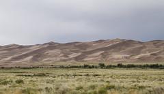 Trees Against the Dunes (brucetopher) Tags: dune sand dunes sanddunes valley desert rain cloud cloudy storm wonder tree trees sagebrush sage mountains