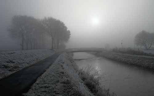 Frozen and misty world