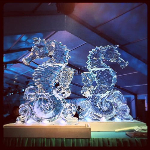 Back to back larger than life #seahorse #icesculptures for an under the sea #holiday #party @mcnayart with @wilkinsonrhodes #fullspectrumice #sanantonio #thinkoutsidetheblocks #brrriliant - Full Spectrum Ice Sculpture