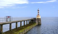 HARBOUR ARM & LIGHT, AMBLE, NORTHUMBERLAND (Roger Perriss) Tags: sea seaweed river concrete estuary northumberland beacon breakwater amble harbourarm