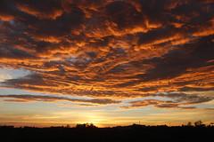 © THIAGO BIFFS | FOTOGRAFIA (Thiago Biffs) Tags: brazil sky sun sol yellow brasil dawn interior céu amarelo nuvens paulo serra são amanhecer sitio itapecerica aguia